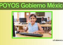 Programas de apoyo para la educación, del Gobierno de México